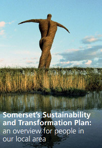 Somerset's Sustainability and Transformation Plan
